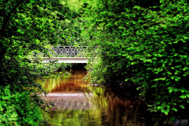 Le long de l'Eau Bourde, petit affluent de la Garonne, qui jalonne des parties des 160km du GR Bordeaux métropole.