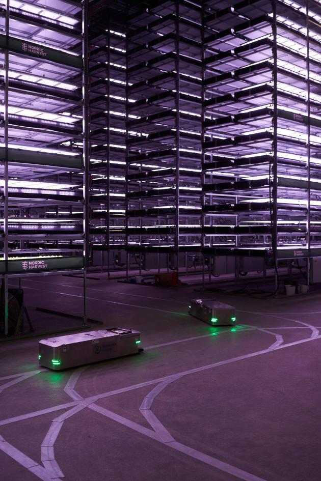 La plus grande ferme verticale d'Europe à Taastrup, à l'ouest de Copenhague, le 20 novembre. A l'été 2021, la surface totale du site atteindra 7000 m². L'éclairage est assuré par 20000 lampes LED.