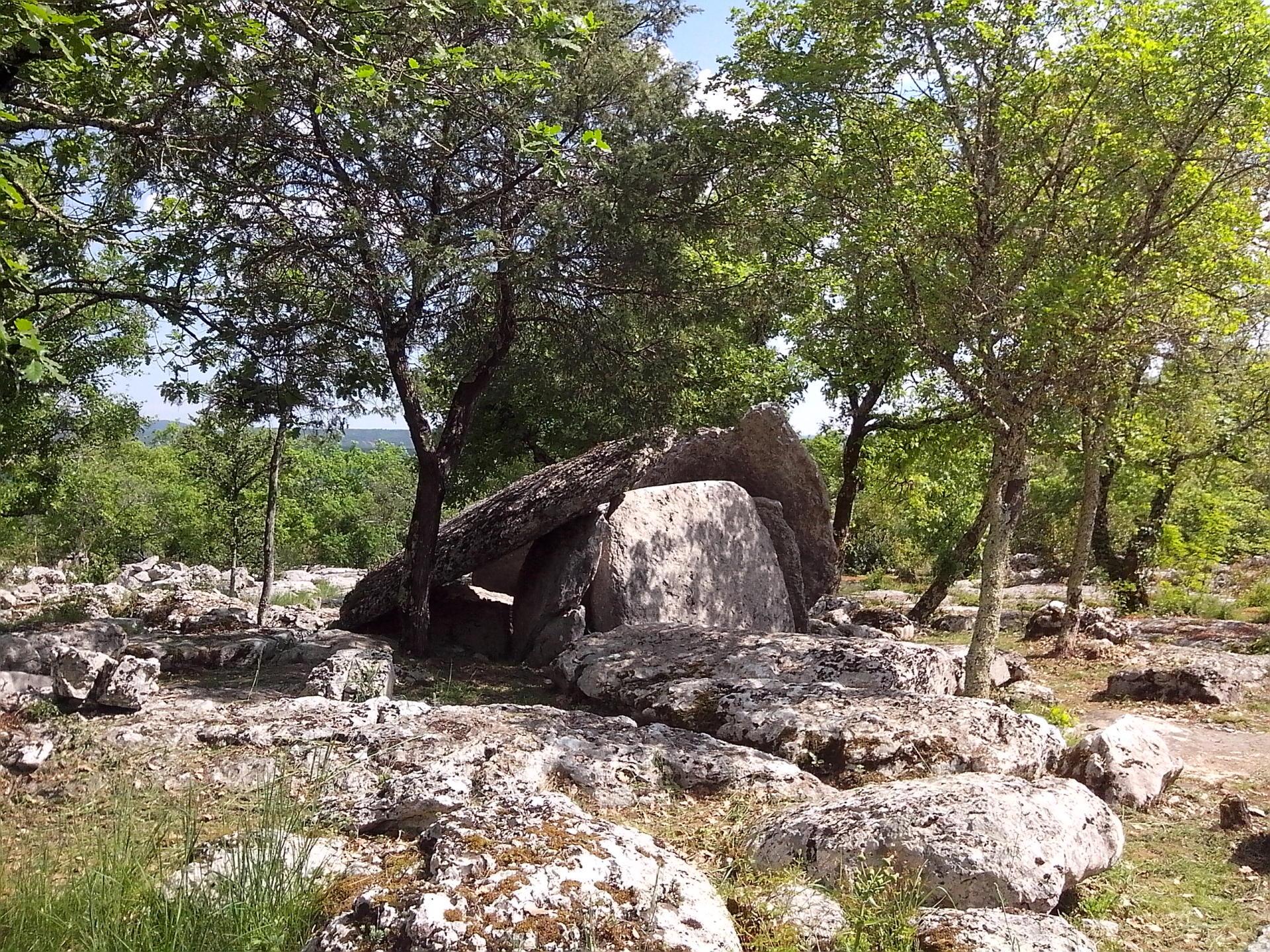 Un dolmen du Ranc de Figère sur le plateau de Labeaume.