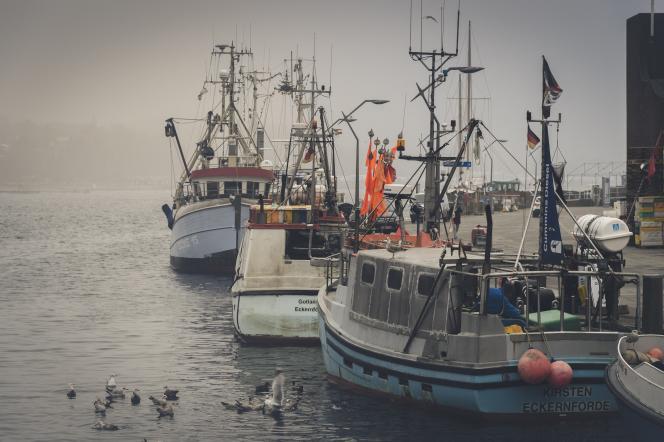 Dans un port de pêche.