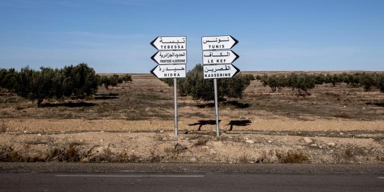 10 décembre 2020 : dans la région de Haidra proche de la frontière  algérienne