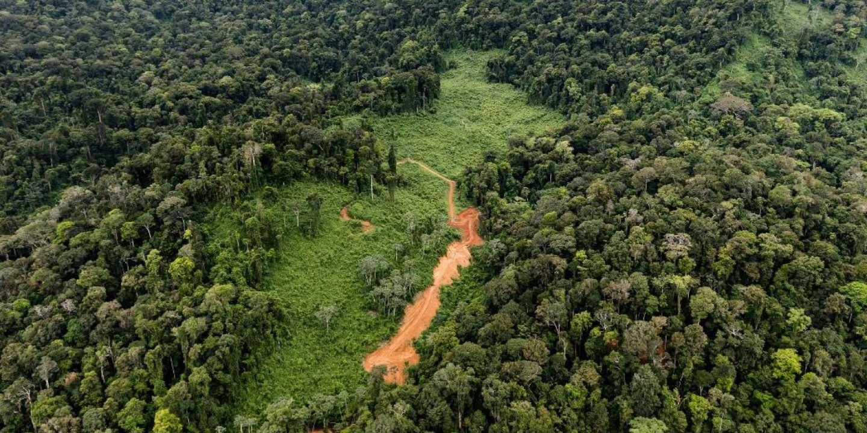 En Guyane, le projet minier Montagne d'or relancé par la justice
