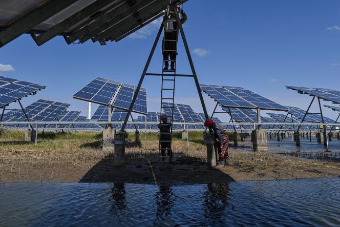 Les panneaux solaires de la centrale intégrée du site de Yangchen (province de Jiangsu) en octobre 2020.