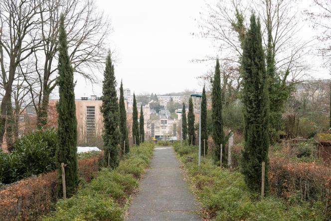 Cité-jardin La Butte rouge, àChâtenay-Malabry (Hauts-de-Seine), le 4 janvier.