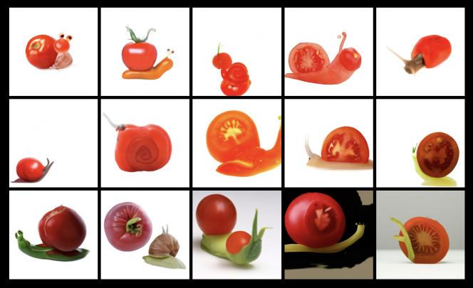 Une capture d'écran réalisée par « Le Monde» des résultats d'un escargot fait en tomate généré par DALL-E.