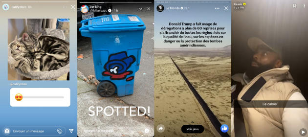 Collage de différentes « stories » sur Instagram, Twitter, Facebook et Snapchat.