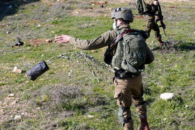 یک عضو نیروهای امنیتی اسرائیل درخت زیتونی را که معترضین فلسطینی ادعا کردند زمین مصادره شده آنها در 4 ژانویه است ، به روستای خالهول ، در شمال هبرون آوردند.