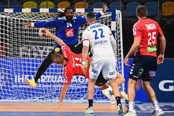 Wesley Pardin a réalisé 18 arrêts sur 42 tirs norvégiens lors du match d'ouverture du mondial de handball en Egypte, le 14 janvier.