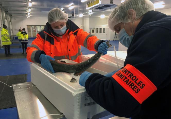 Des agents procèdent à des contrôles sanitaires sur le saumon britannique à son arrivée au port de Boulogne-sur-Mer (Pas-de-Calais), le 12 janvier.