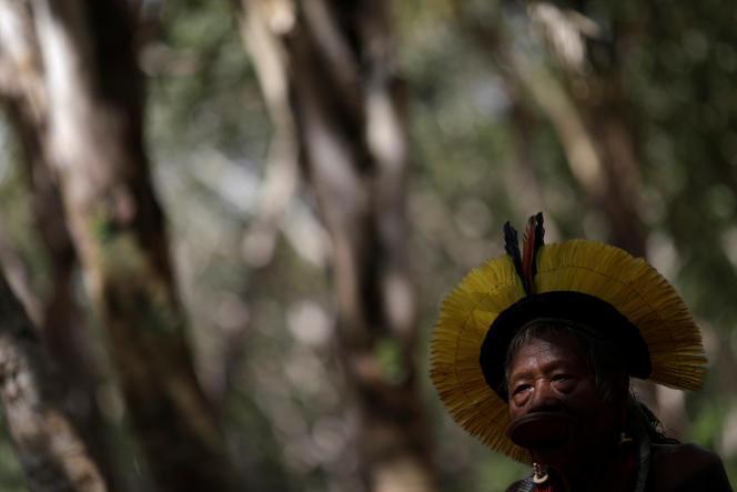 کاسیکه رائونی ، رهبر محلی جامعه کایاپو ، در دهکده Piaracu ، برزیل ، 15 ژانویه 2020.