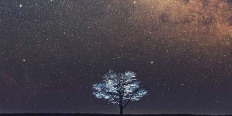 « L'Univers existe-t-il ? », un livre poil à gratter pour les cosmologistes