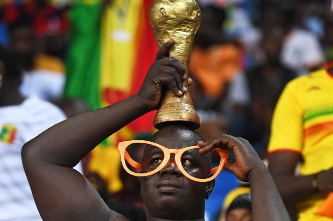 Un supporteur du Mali pendant la Coupe d'Afrique des nations (CAN) de 2017.