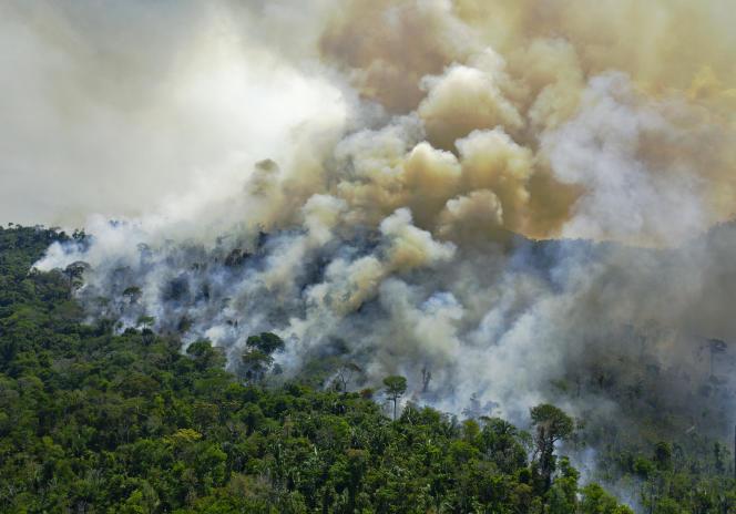 Kebakaran di hutan hujan Amazon, selatan Novo Progresso (State Para), Brasil, 16 Agustus 2020. A