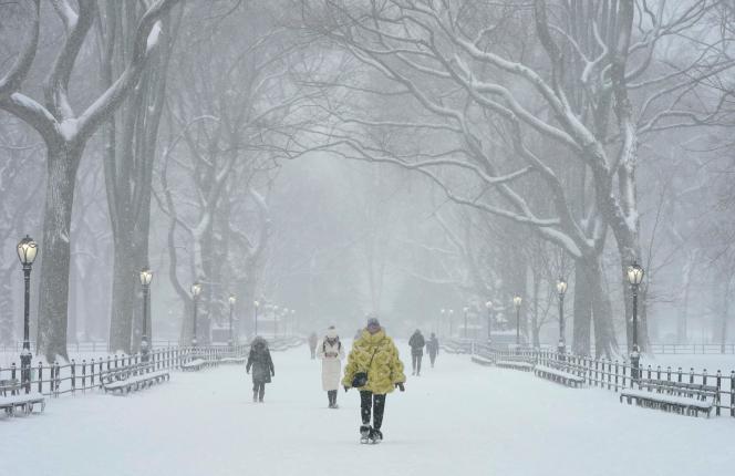 پارک مرکزی ، نیویورک ، دوشنبه ، 1 فوریه.