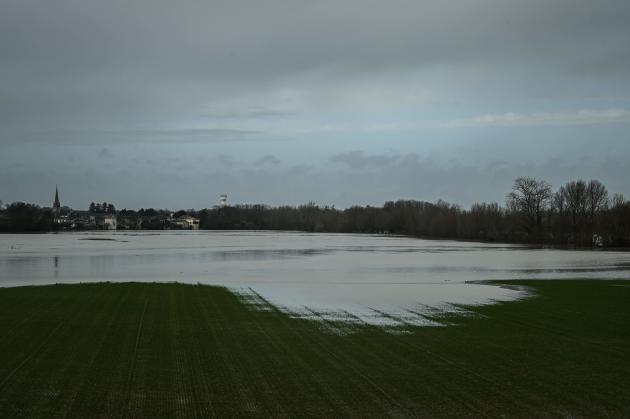 Des champs inondés à l'extérieur de Podensac, en Gironde, le 3février.