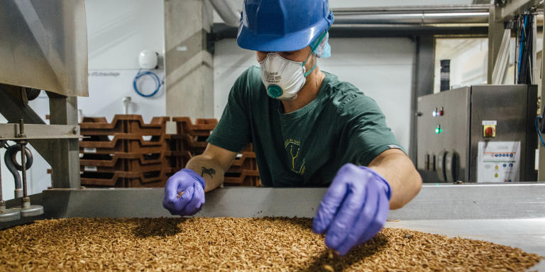 An employee loads larvae into a sorting oven inside the Ynsect insect farm in Dole, France, on Tuesday, May 19, 2020. A year before the Covid-19 pandemic caused havoc in the worlds food supply, venture capitalists plunged $125 million into mealworm breeding company Ynsect. Photographer: Cyril Marcilhacy/Bloomberg via Getty Images