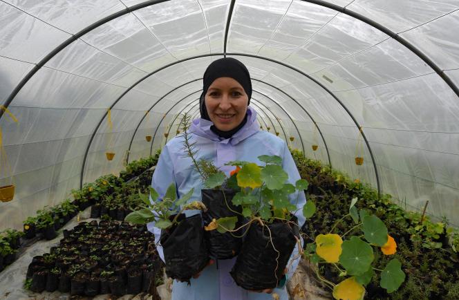 Sonia Ibidhi sur son exploitation de fleurs à Tabarka, en Tunisie, le 28janvier 2021.