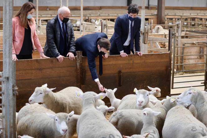 Emmanuel Macron (au centre) visite une ferme à Etaules (Côte-d'Or), le 23 février.