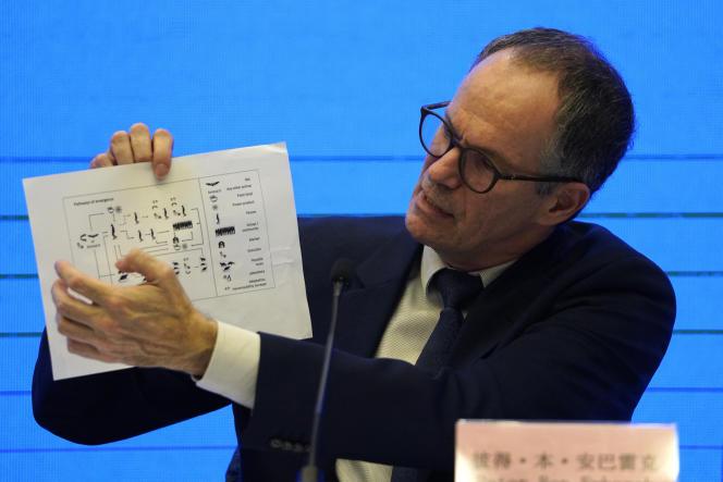 Peter Ben Embarek de l'Organisation mondiale de la santé (OMS) présente un tableau montrant les voies de transmission du virus lors d'une conférence de presse à la fin de la mission de l'OMS, à Wuhan, le 9 février 2021.