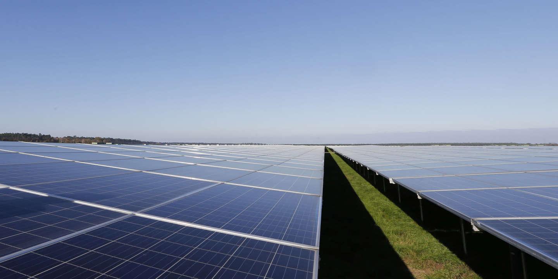 Un projet de parc photovoltaïque en Gironde menace 1 000 hectares de forêt de pins - Le Monde