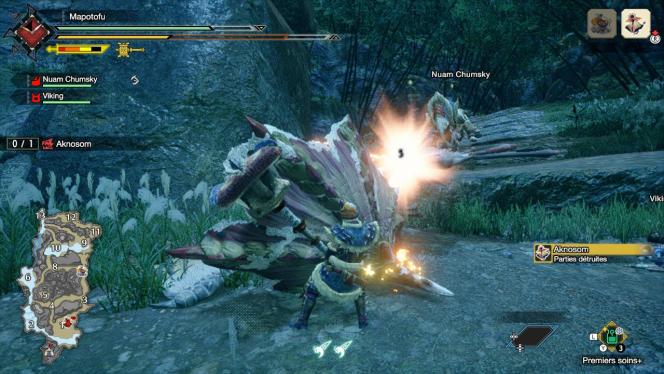 L'Aknosom est un grand volatile avec les plumes duquel on peut se fabriquer ce superbe marteau coloré.