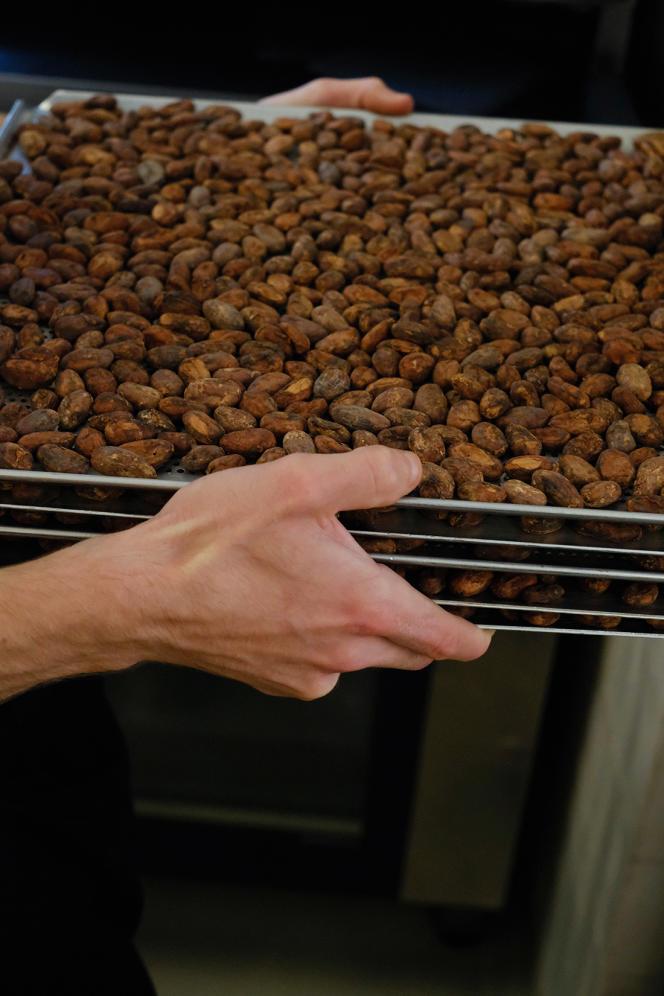 Des fèves de cacao chez Plaq.