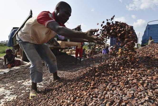 Un centre de tri du cacao, à Sobre, en Côte d'Ivoire, en mars 2017.