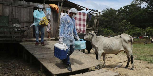 Situation sanitaire «absolument dramatique» auBrésil