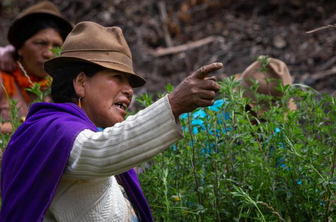 Consuelo Tixi, une indigène équatorienne, àPujili, le 6 avril 2021. Elle ne soutient aucun des deux candidats au second tour de la présidentielle du 11 avril.