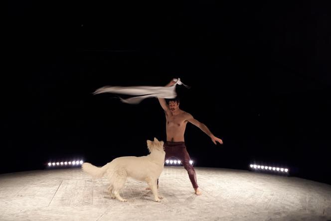 Le jongleur Vladimir Couprie, avec sa chienne Alba,au festival Spring, en mars à La Brèche- Pôle national cirque de Cherbourg-en-Cotentin.