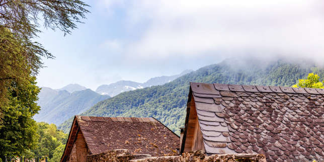 «Comme des bêtes», de Violaine Bérot: ces Pyrénées d'où la magie s'en va