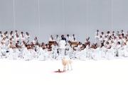 « La Passione », dirigé par Kent Nagano dans une mise en scène de Romeo Castellucci, au Deichtorhallen d'Hambourg, en 2016.