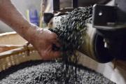 Le boba désigne une variété de tapioca noir, spécialité de Taïwan. Ici dans une usine de Taipei, en 2016.