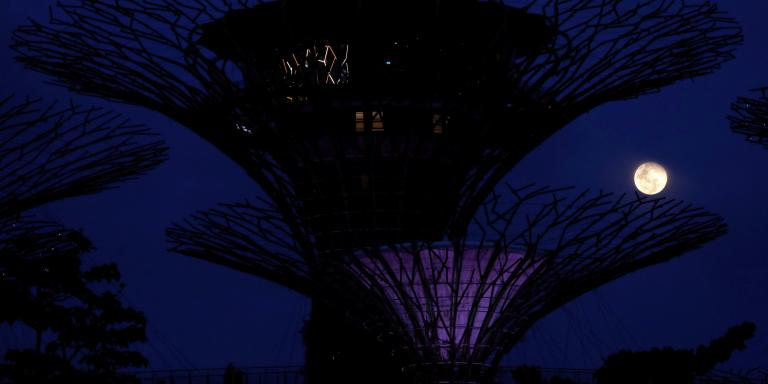 The moon rises to become a pink supermoon among the Supertree Grove at Gardens by the Bay, in Singapore April 26, 2021.  REUTERS/Edgar Su