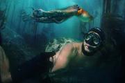 «La Sagesse de la pieuvre», de Pippa Ehrlich et James Reed, avec Craig Foster.