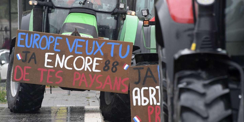 « Rien n'empêche l'UE de fixer des règles de réciprocité pour les produits agricoles importés, si ce n'est un déficit d'ambition européenne »