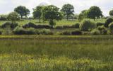 France, Vigneux de Bretagne, 44, paysage bocager dans le périmètre du projet d'aéroport de NDDL.