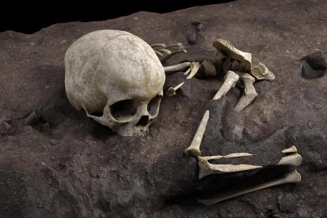 Reconstitution virtuelle du fossile Mtoto dans sa fosse funéraire.