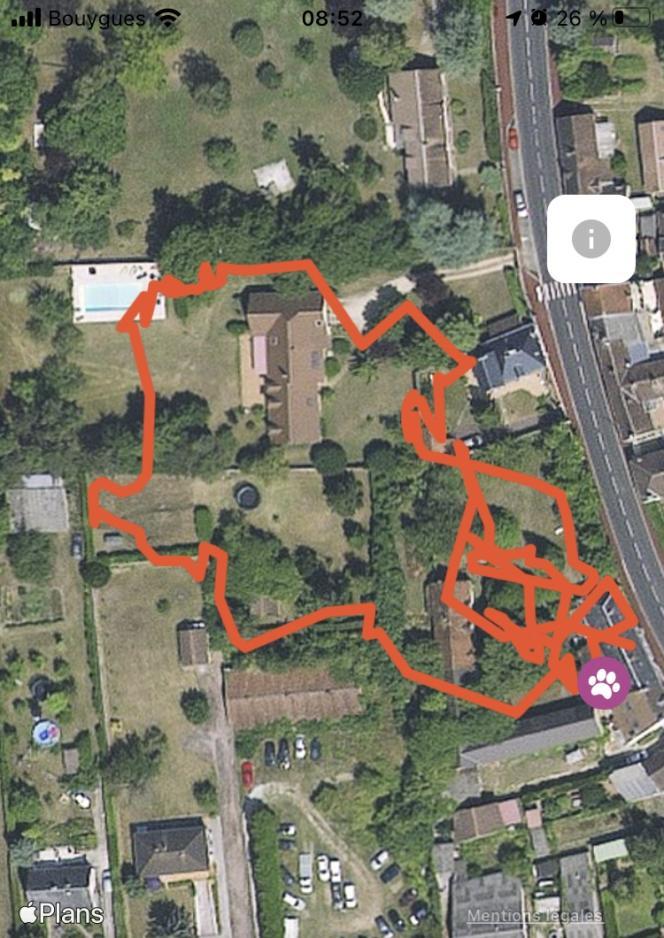 Trois heures dans la vie d'un chat suivi par GPS. Apparemment il est passé par la piscine...