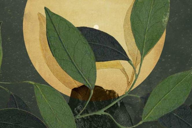 Materia Prima, s'éveiller à sa nature, par Gaëlle Faure