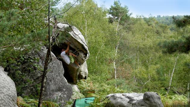 Séance d'escalade sur un bloc de grès en forêt de Fontainebleau.