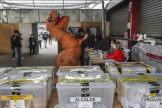 Un électeur déguisé en dinausore vote pour l'Assemblée constituante, à Santiago, le 16 mai.
