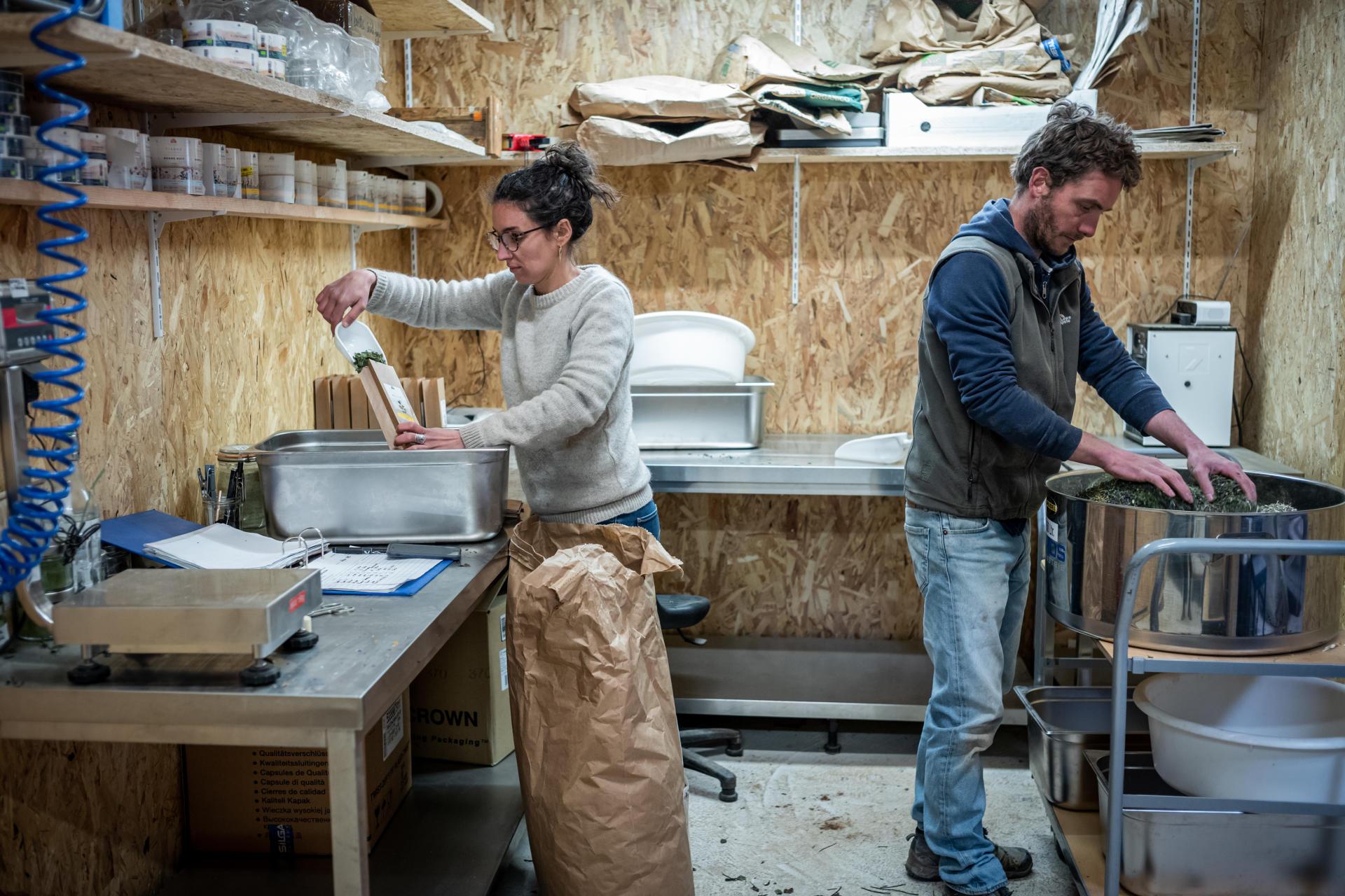 Marion et Romain conditionnent le mélange de plantes aromatiques à la Ferme des Homs (Aveyron).