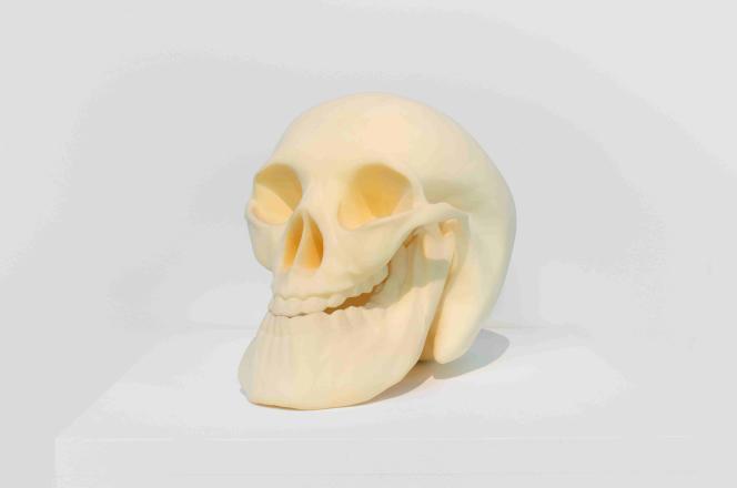 «Smiling Skull», 2008, Courtesy Galerie, G-P & N Vallois (Paris) – GILLES BARBIER – TRAVAILLER LE DIMANCHE. HAB GALERIE –LE VOYAGE À NANTES.