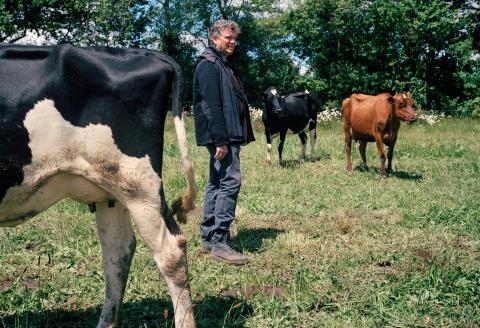 Arnaud Montebourg dans le champ de la ferme où sont fabriquées ses glaces