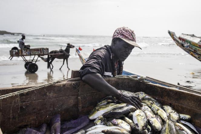 Un vendeur de poissons à Dakar, au Sénégal, le 28avril 2021.