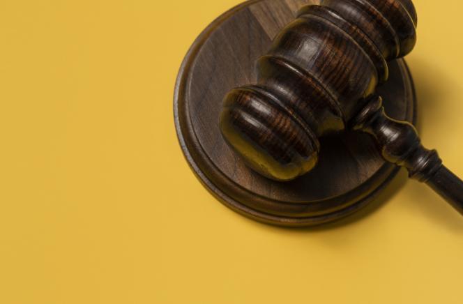 Des parlementaires ont écrit au Conseil constitutionnel que le passage obligatoire par la médiation portait atteinte au droit de recourir à la justice, compte tenu du faible nombre de conciliateurs en fonction.