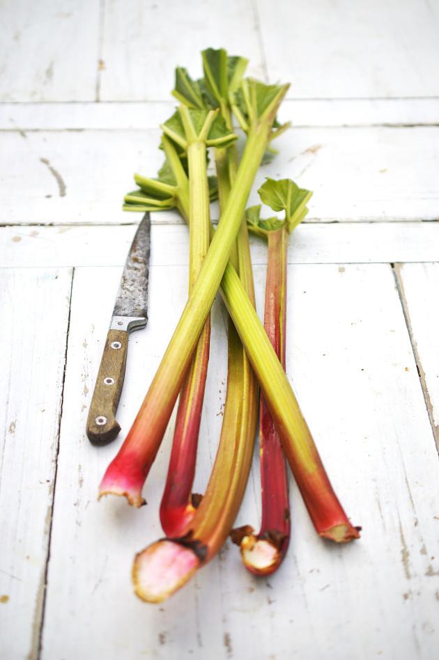 La rhubarbe, membre de la famille de l'oseille, est riche en vitamine C, en potassium et en phosphore.