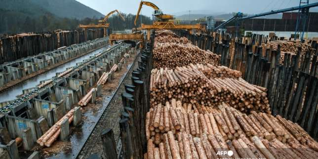 Les géants du béton cherchent leur place au sein de la filière bois