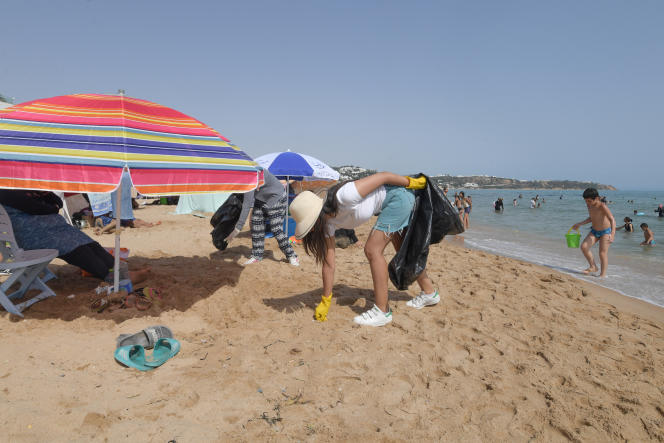 Des volontaires collectent des déchets sur une plage d'El Marsa, près de Tunis, en juillet 2019.